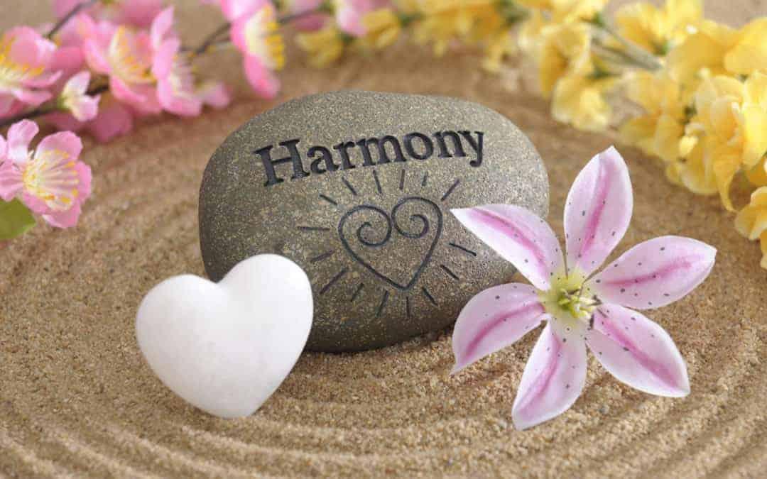 La Valeur de l'Action Harmonieuse