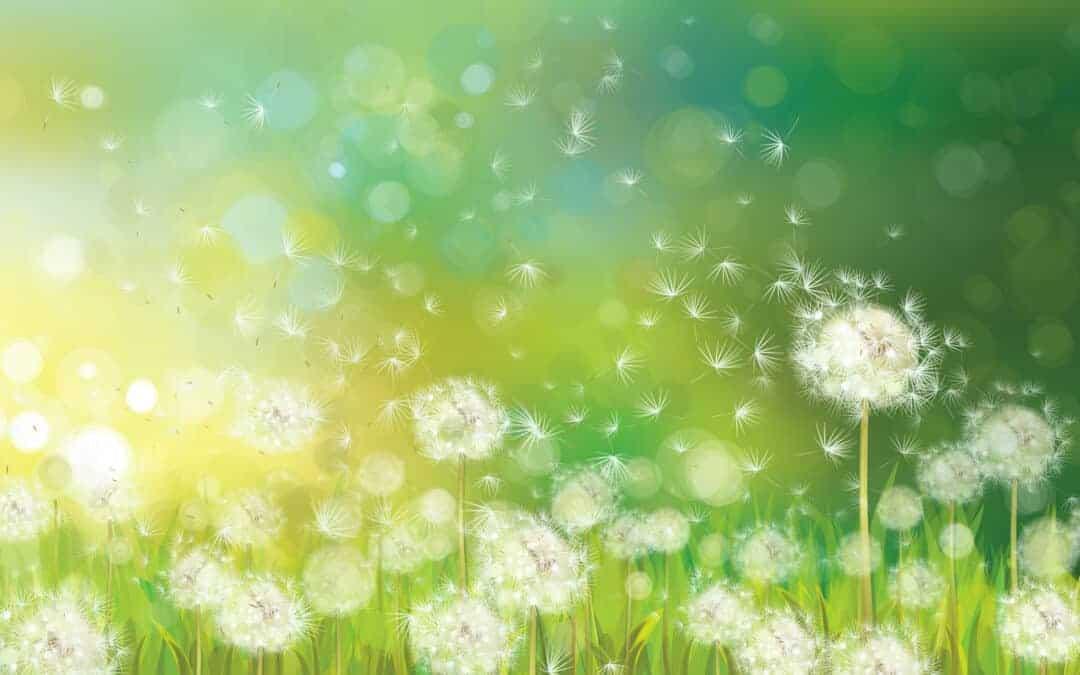 4 Vœux pour Modeler votre Vie vers un Futur Positif