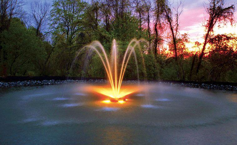 Le Rituel de Guérison de la Fontaine de Lumière