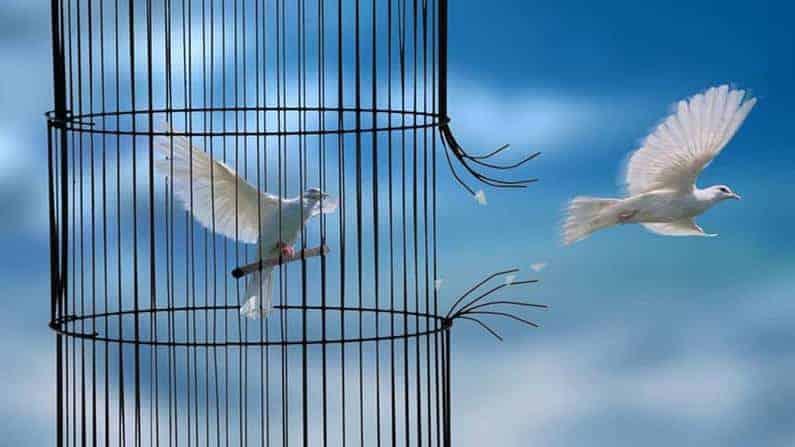 Rituel pour se libérer du Ressentiment