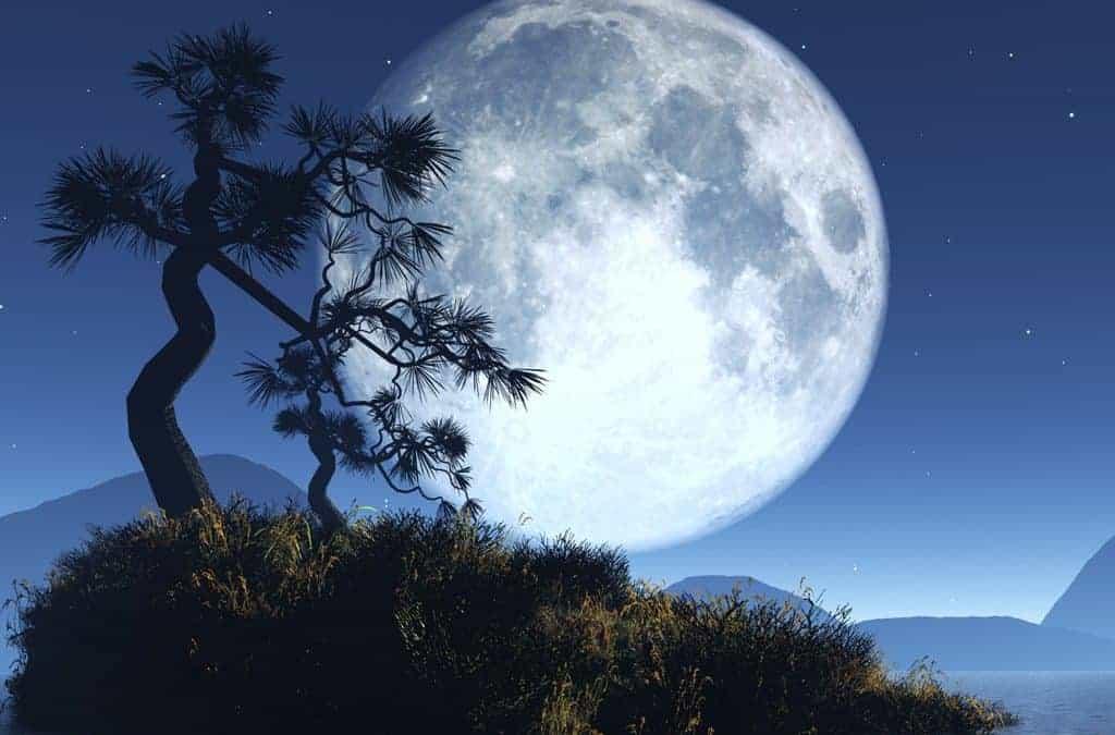 Les Séries de la Nouvelle Lune